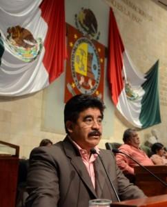 Diputado de la fracción parlamentaria del PRI