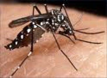 Alerta por casos de dengue en Oaxaca