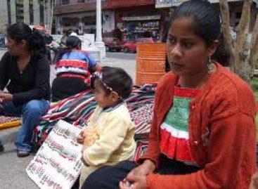 En marcha unidades móviles de apoyo a la mujer