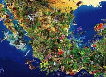 México emprende acciones para conservar la biodiversidad