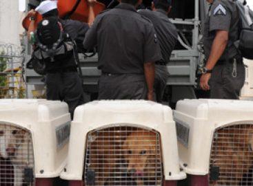 El Ejército reitera localización de las primeras víctimas en Tlahuitoltepec