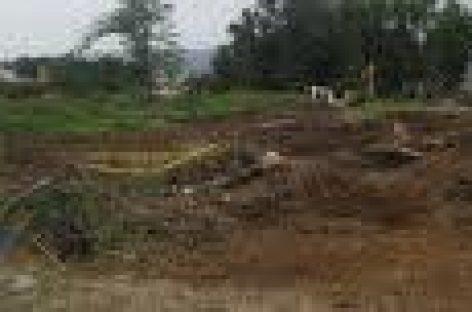 Aseguran que se respetan las áreas verdes en construcción de tienda Chedraui