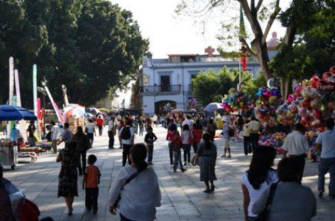 Plaga de ratones infesta Zócalo de Oaxaca