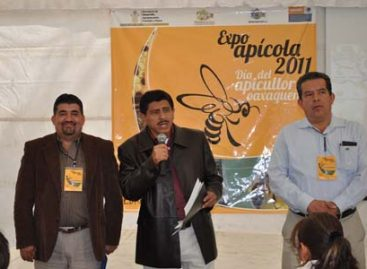 Avanza el gatopardismo en Oaxaca