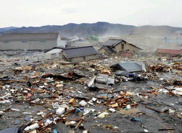 Hasta ahora 21 mil muertos en Japón, sólo en la prefectura Miyagi más de 5,000 por el terremoto y tsunami