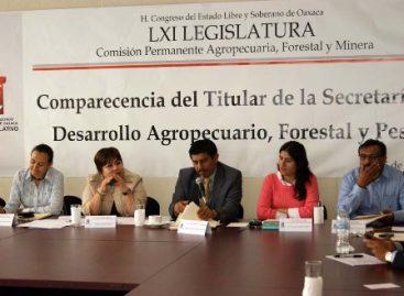Cuestionan diputados desempeño de Salomón Jara en la SEDAF