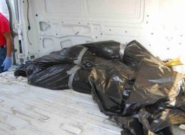 Capturados 14 implicados en la matanza de San Fernando Tamaulipas