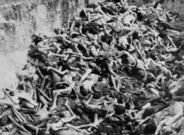Holocausto mexicano:¿la solución final del PAN?