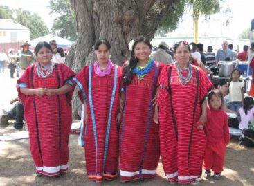 De ocho millones de mujeres indígenas menos del 3 % son profesionales: CDNH