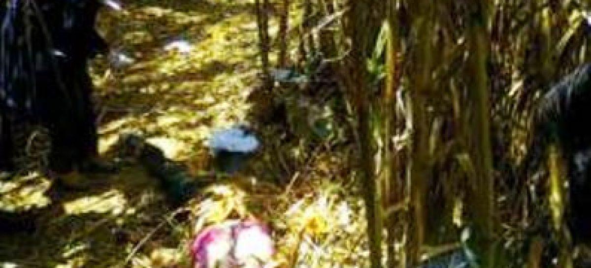 Niña violada y estrangulada en Santa Cruz Xoxocotlán