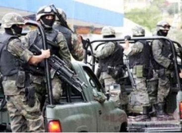 Asegura Ejército en Sonora y Tamaulipas drogas