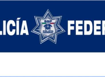 Siete muertos y un herido saldo de combate de la PF con delincuentes, en Apatzingán