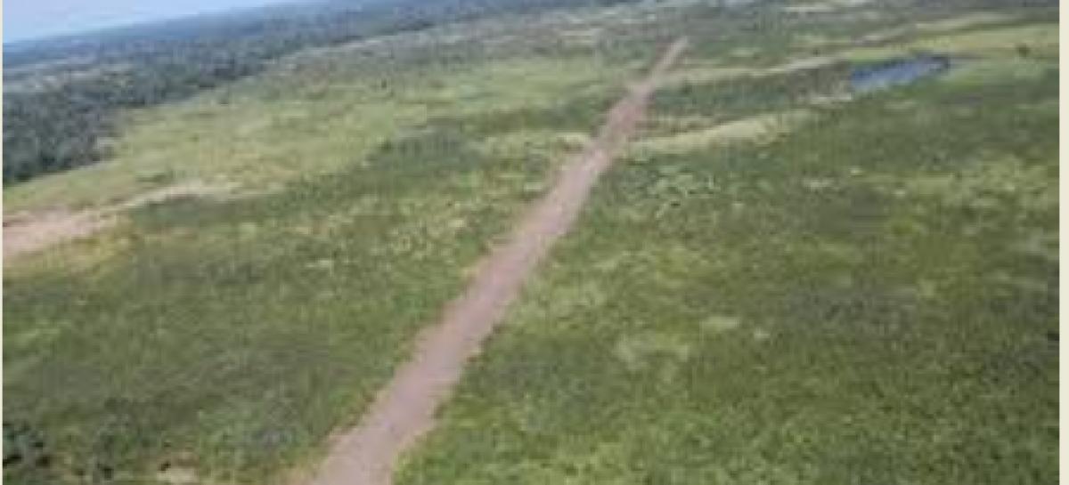 Destruye SEDENA pista aérea y 3 toneladas de mota, en Santa María del Oro, Durango