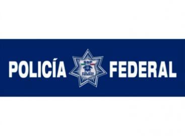 En agosto incautan PF mota, coca, heroína, armas y detiene a 268 individuos