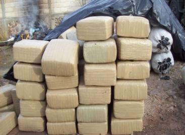 Asegura personal militar casi cinco toneladas de marihuana en municipios del estado de Tamaulipas