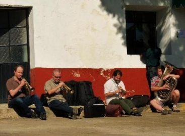 Vigoriza Instrumenta Oaxaca 2011 conocimiento musical del mundo