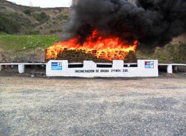 Ejército incinera más de nueve toneladas de droga en Aguaje de la Tuna, Baja California