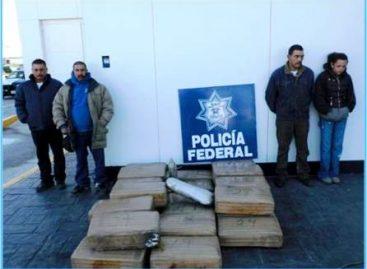 Pf detecta 241 kilos de marihuana en pick up, en sonora; cuatro detenidos