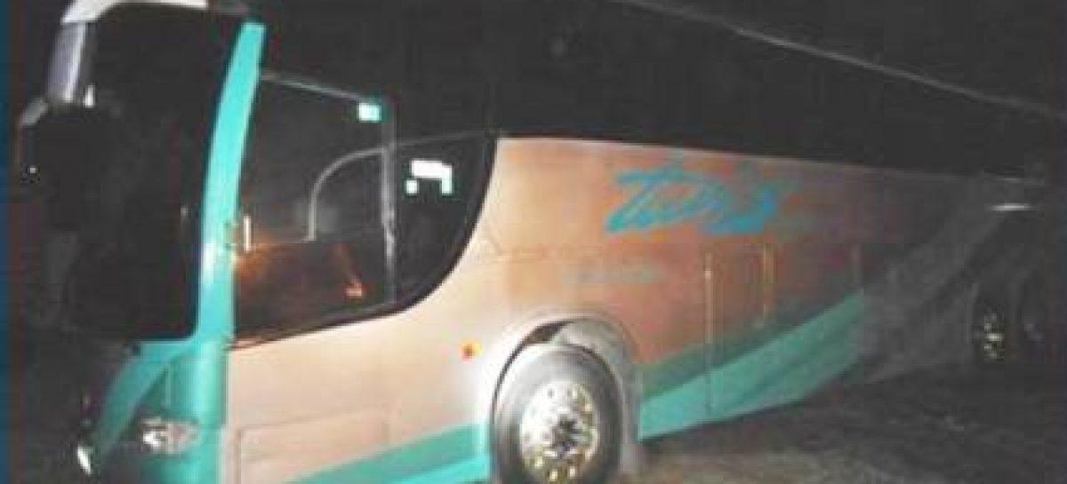 PF detecta con rayos gama marihuana oculta en autobús, en Veracruz