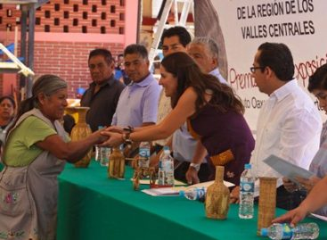Primer Concurso de Fibras Vegetales Duras: Instituto Oaxaqueño de las Artesanías