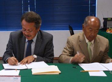 Apoyo y colaboración interinstitucional entre el IEEPCO y el IEAIP