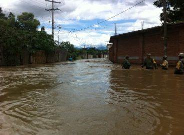 Deja lluvia árboles caídos y encharcamientos esta tarde en la ciudad de Oaxaca y Valles Centrales