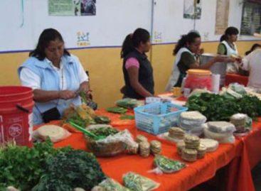 """Ofrece mercado orgánico """"El Pochote"""" productos naturales surgidos de la tierra de Oaxaca"""