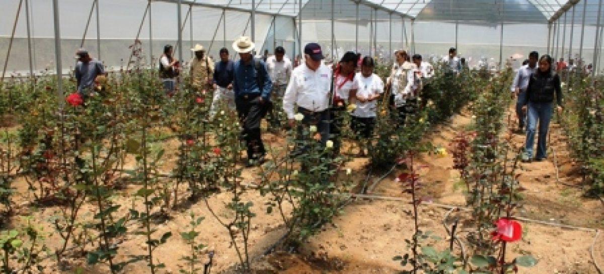 Inauguran Estancia Infantil y colocan Piso Firme en la Mixteca