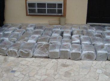 Policías Federales localizan 279 kilos de marihuana en Tamaulipas