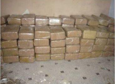 Aseguran casi dos toneladas de mariguana en Ciudad Miguel Alemán, Tamaulipas