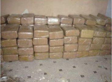 Asegura personal militar más de dos toneladas de mariguana en Baja California