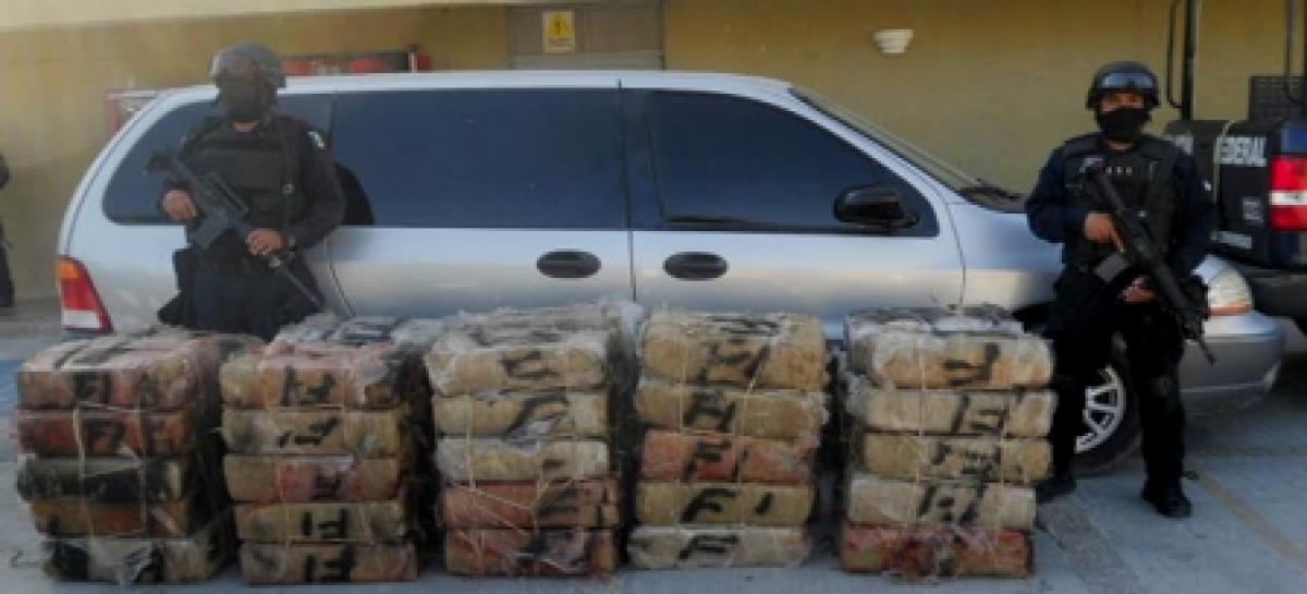 Dentro de un vehículo, policía federal localiza más de media tonelada de marihuana en Tamaulipas