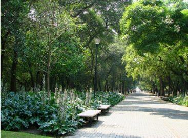 Inicia Décimo Festival del Bosque de Chapultepec, en el Distrito Federal