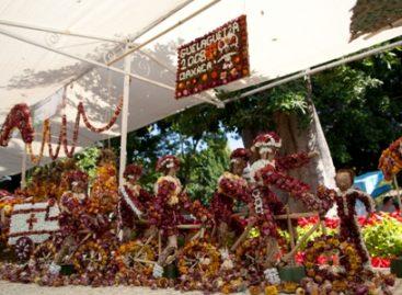 """Este año, dispondrán hortelanos de 10 toneladas para la tradicional """"Noche de Rábanos"""""""