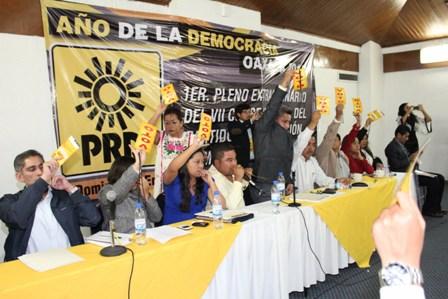 Plenaria del VII Consejo Estatal