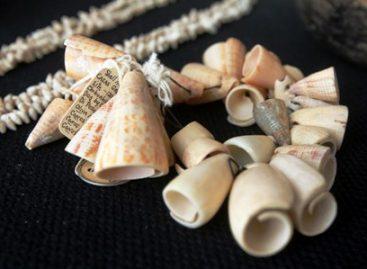 Recupera SRE bienes arqueológicos y paleontológicos del extranjero