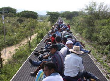 Policía Federal detiene a 11 migrantes guatemaltecos y a un traficante de indocumentados