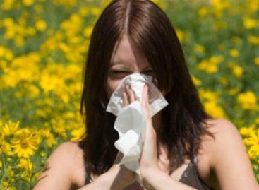 Aumentan alergias en primavera por la presencia de polen en el medio ambiente