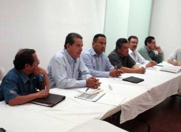 Analiza Comité Nacional Sistema Producto Nopal y Tuna proyectos para el 2013