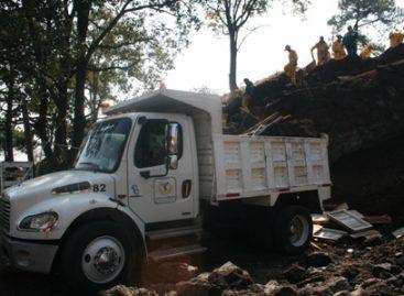 Concreta GDF segundo operativo de recuperación de suelo de conservación en Tlalpan