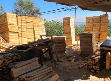 Realizan segundo operativo de desmantelamiento y aseguramiento de aserraderos clandestinos en Milpa Alta