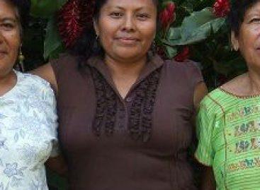 Impiden perredistas traslado de actas de comicios de San Juan Cacahuatepec a la capital de Oaxaca