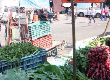 Debe México de contar con alternativas para garantizar la autosuficiencia alimentaria: Pedraza Chávez