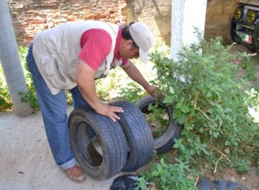 Registran 315 casos de dengue en el Istmo de Oaxaca; Refuerzan acciones contra el dengue en municipios afectados