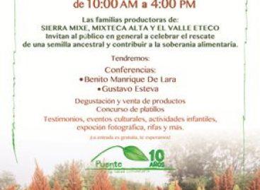 """Festejarán """"Día del Amaranto"""" en Oaxaca, alimento fundamental en la lucha contra la desnutrición"""