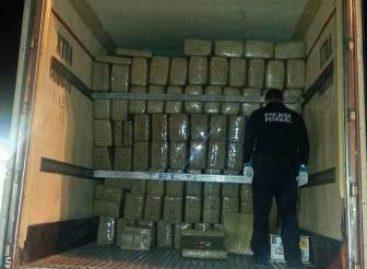 Asegura Policía Federal 20 toneladas de marihuana y 30 kilos de droga sintética en Sonora
