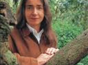 Criminalizar a pobladores de Montes Azules y La Lacandona, una infamia