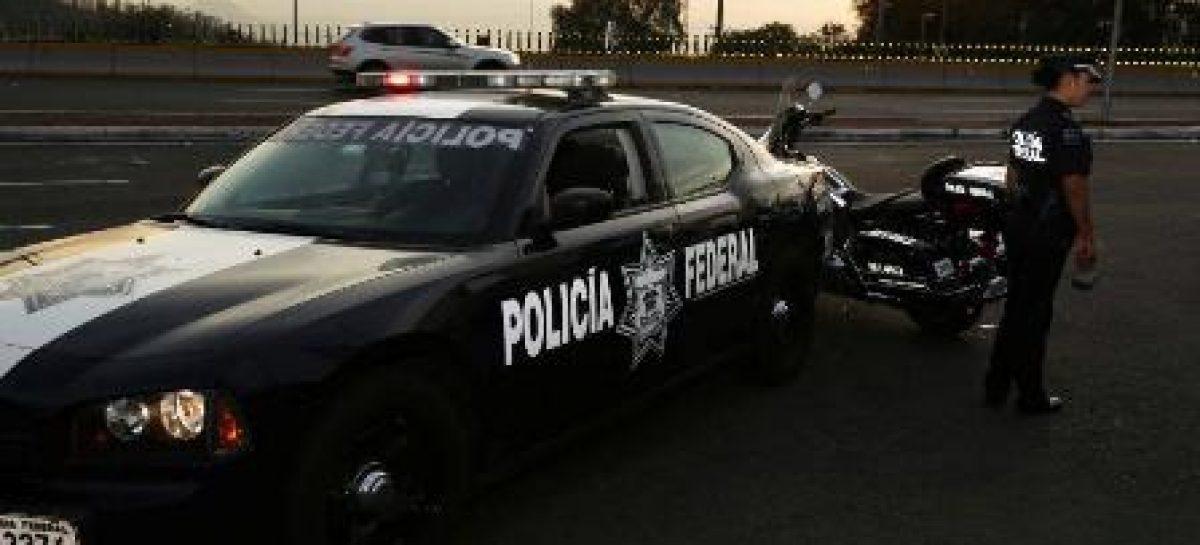 Detecta Policía Federal suplantación de identidad de instituciones y empresas en la red para perjudicar a usuarios