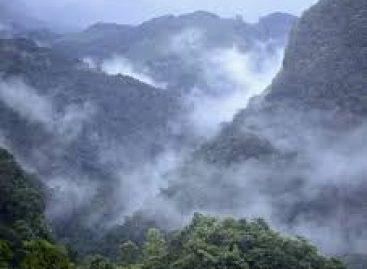 Selva Lacandona: por el respeto a los derechos de la naturaleza y de los Pueblos Indígenas