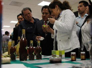 Reciben estudiantes de Universidad Tecnológica de Oaxaca estímulos de Proyecto ESCALA 2014